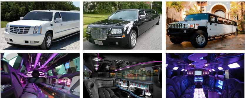 Limo Service Palm Valley